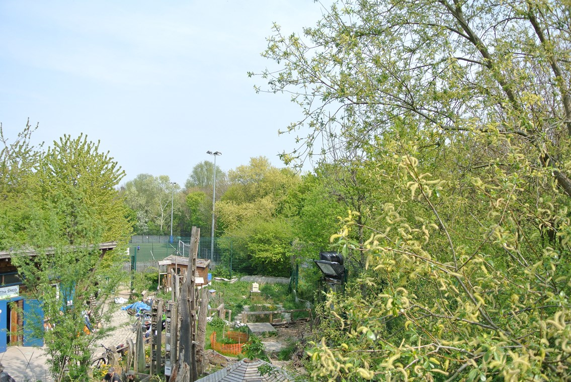 Bringing the sound of bird song to London Bridge Station: Soundcamp and Jessie Brennan Sounds Interrupted Image Stave Hill Ecological Park  Rotherhithe View from streambox location 17 April 2019