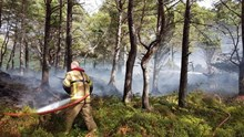 Firefighting after a camp fire caused a wildfire on the island of Eilean Eachainn in NatureScot's Beinn Eighe and Loch Maree Islands National Nature Reserve last year ©Doug Bartholomew/NatureScot