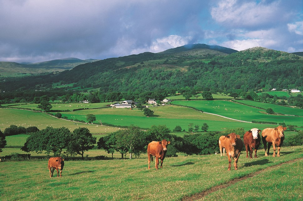 The Britain-wide Red Meat Levy Ring-fenced Fund will increase from £2million to £3.5million next year