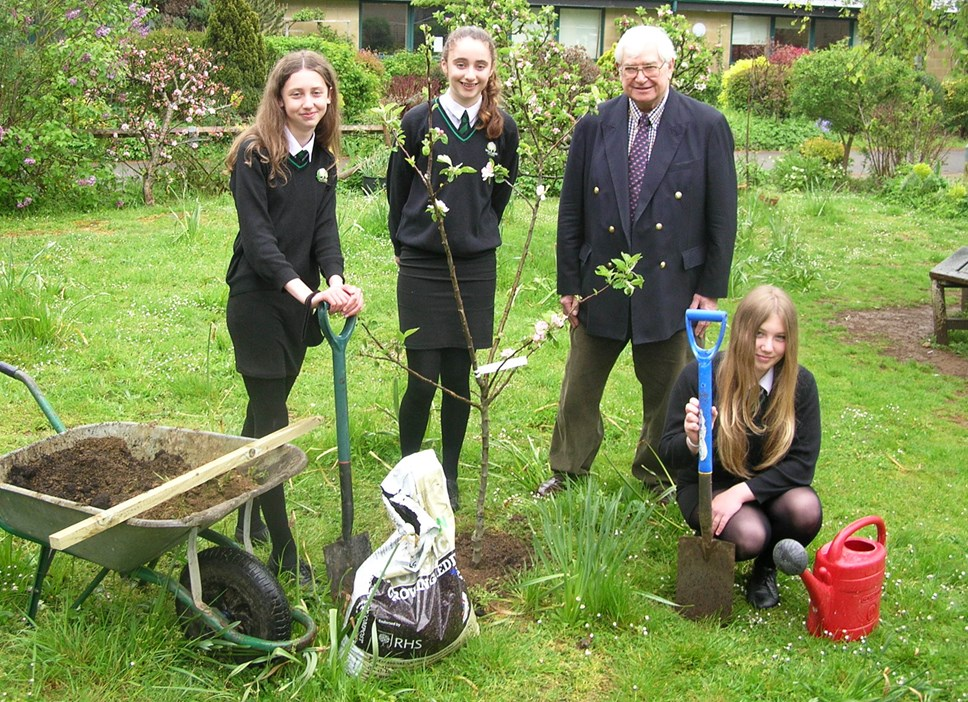 Wood Green School Climate Comp