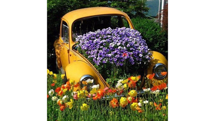 VW Beetle with flower-2