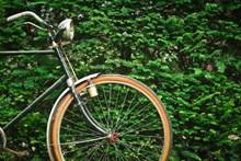 bike-1549102 960 720