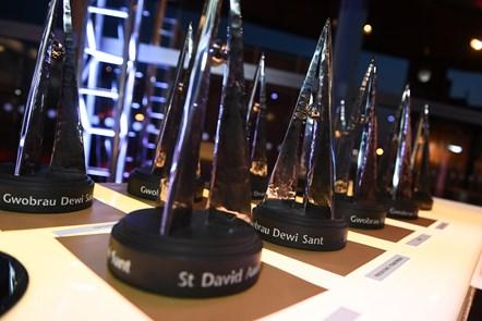'Heroes' recognised in St David Awards 2020: St David Awards-2