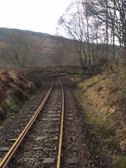 Tree on the line in West Highlands after Storm Gertrude in January 2016