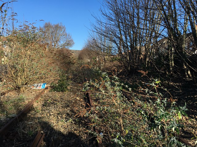 Disused Kent railway line set for new lease of life: Disused harbour line