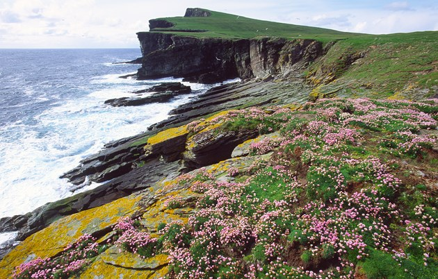 Noss National Nature Reserve