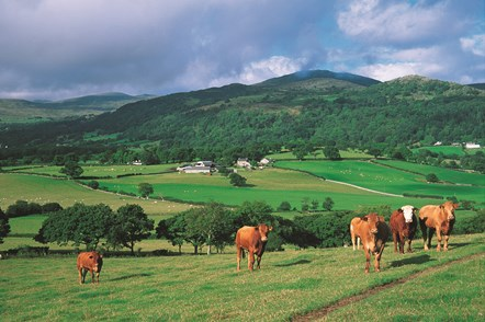 The Britain-wide Red Meat Levy Ring-fenced Fund will increase from £2million to £3.5million next year-2