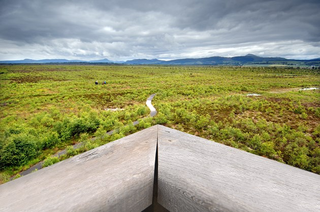 View from the tower at Flanders Moss NNR near Stirling © Dougie Barnett/SNH