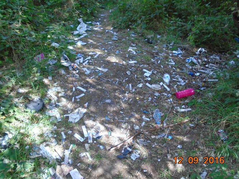 Landowner fined for letting dangerous waste build up near nursery: dsc03178.jpg