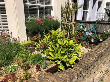 Islington in Bloom's Best Front Garden prize winner in 2020 was Pamela Berham