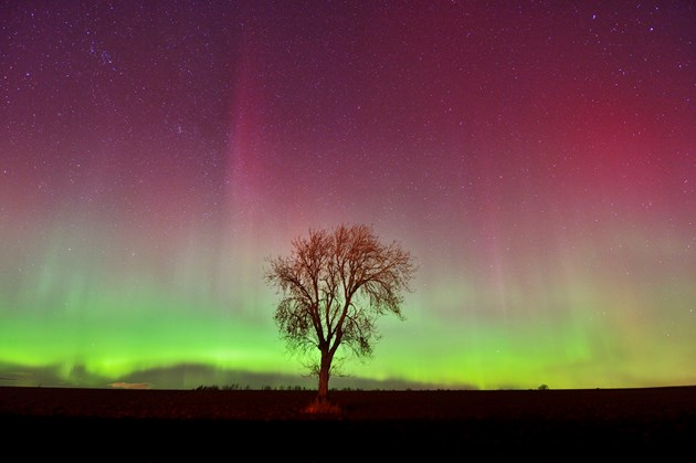 On the lookout for the aurora in Scotland: northernlights-d7750