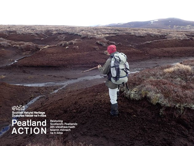 Applications open for funding to restore Scotland's peatlands: Peatlands
