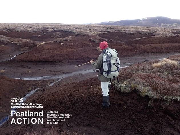 Applications open for funding to restore Scotland's peatlands: Peatlands