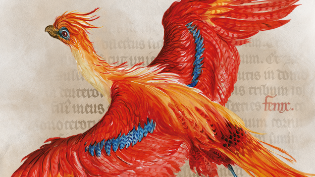 New 'Harry Potter: A History of Magic' exhibition set to light up Leeds Central Library from this Sunday: exhibition.png