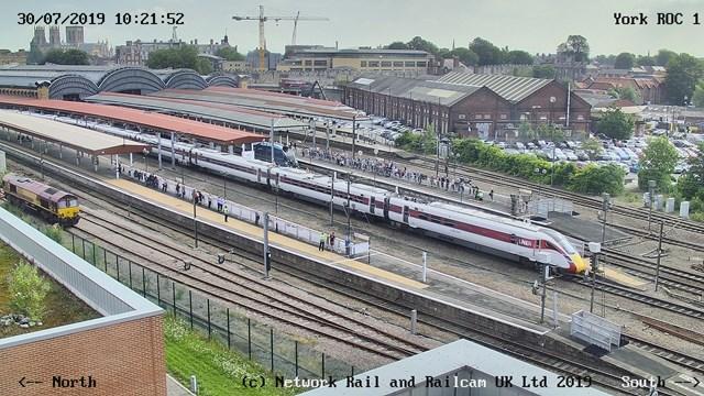 York ROC webcam still from 30 July with Azuma and Mallard