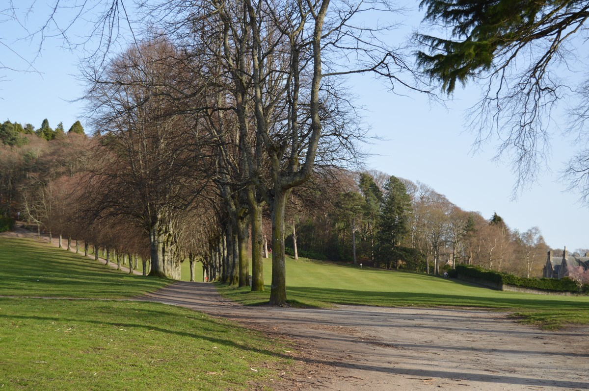Grant Park looking up to Cluny Hill