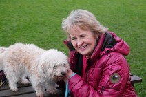 RC - Dog rehoming consultation - 111217
