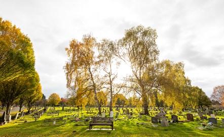 RBC Crematorium 06.11.2019 032