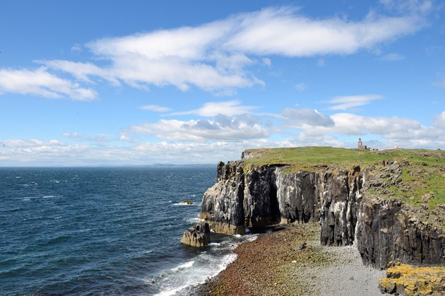 Isle of May National Nature Reserve ©Lorne Gill/NatureScot