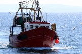 Freeze in effort a priority for Scottish fishing: Marine-fishing-trawler