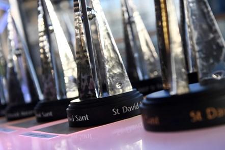 St David Award-5