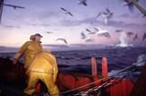 Marine-fisheries-fishing-boat-fishermen