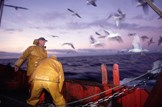 Views sought on fishing controls: Marine-fisheries-fishing-boat-fishermen