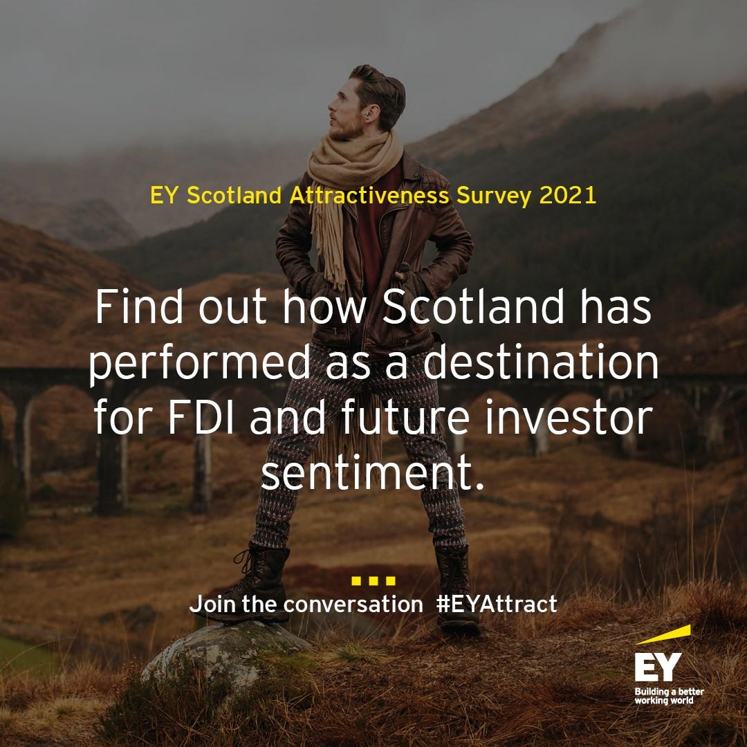 EY Attractiveness Survey Image