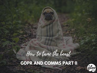 When GDPR Comes Knocking, will you have the Answers? Honestly?: GDPR Part II-2