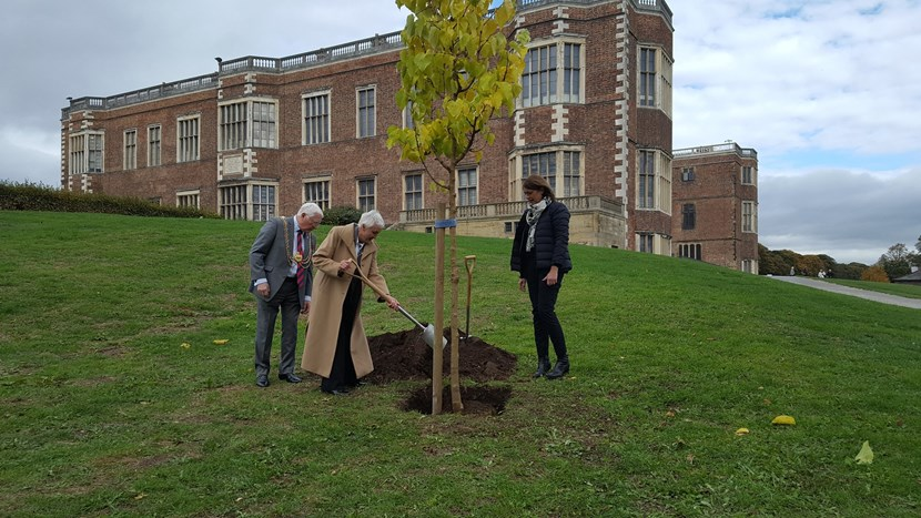 Half century of twinning between Leeds and Lille marked with special tree planting ceremony: lmpic-lille.jpg