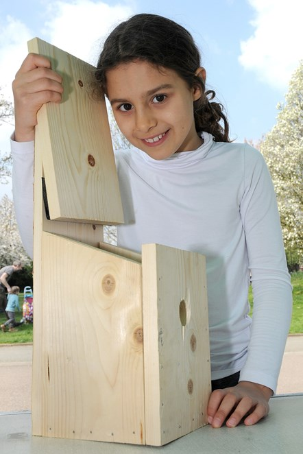 Islington in Bloom launch 2019 - bird box building in Whittington Park