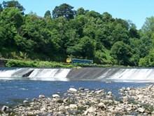 1420xx Radyr Weir 13-07-06 02 SJ
