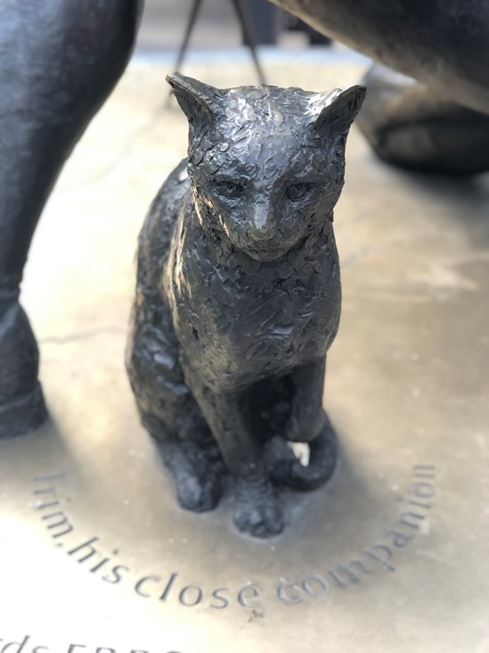 Trim the cat September 2020: Trim was a ship's cat who accompanied Matthew Flinders on his voyages to circumnavigate and map the coastline of Australia (Captain Matthew Flinders, Euston, Britain's Biggest Dig, London) Internal Asset No. 18788