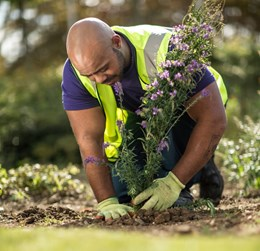 Mitie has become a Corporate Patron of Plantlife